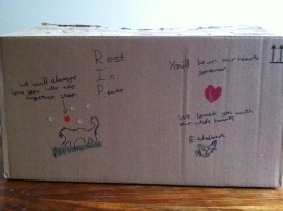 A box for Ethelbert, decorated by our smallest boy